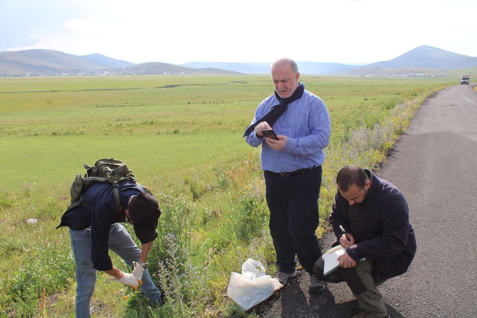 Ardahan'daki ballı bitkilerin koordinatları belirlenecek